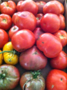 Summer marinated heirloom tomato salad, zesty and garlicy goodness seasoned tomatoes perfect in your next sandwich or grilled cheese, perfect with fresh mozzarella cheese on a platter at your next BBQ!